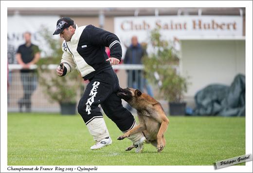0054-29 juin 2013 - Dogo du Domaine de Cauvigny