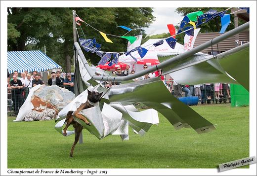 1372-31 août 2013 - Casier des Deux sabres dit Clash