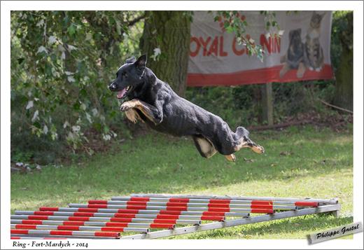 0806-24 août 2014 - Geronimo du Void de la Bure