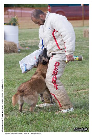 1580-30 mai 2015 - Dixy de la Petite Renardiere à Jean-Luc Courteille Bellido