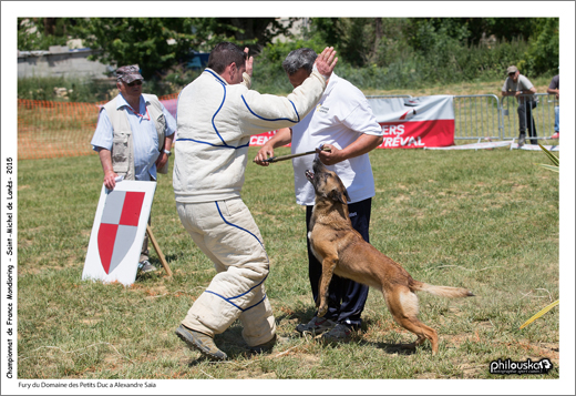 2740-31 mai 2015 - Fury du Domaine des Petits Duc à Alexandre Saïa