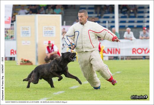 0020-27 juin 2015 - GHOST RIDER DU DOMAINE DE LA VEYSSIERE - M. BAROLIN-JEAN-CHARLES Miguel