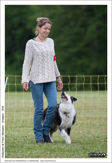 0035-07 mai 2016 - BLUE BOY DU DOMAINE DE LA TINARDIERE - Mme ATLAN Karine