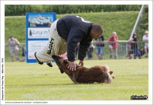 0120-26 juin 2016 - DOGO DU DOMAINE DE CAUVIGNY - PLOMION FLORENT
